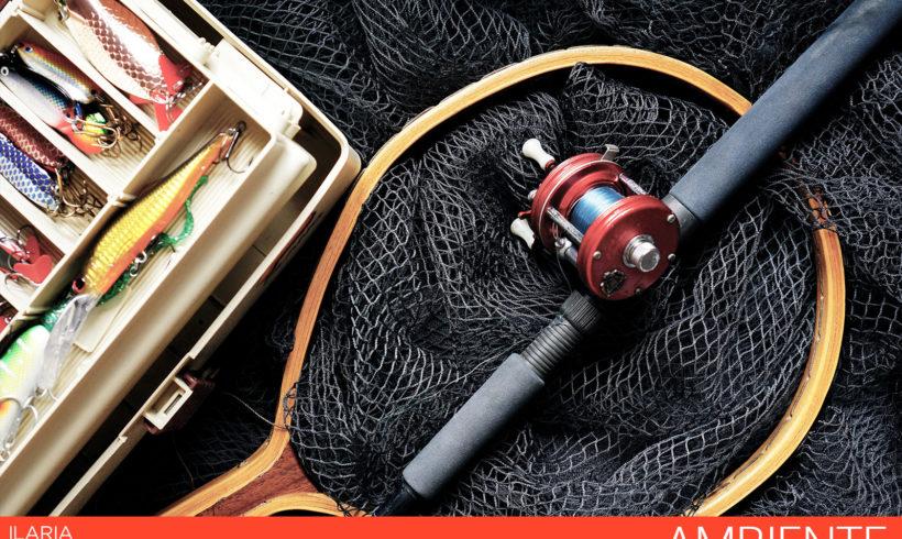Consiglio: al via modifiche su gestione risorse ittiche e pesca acque interne